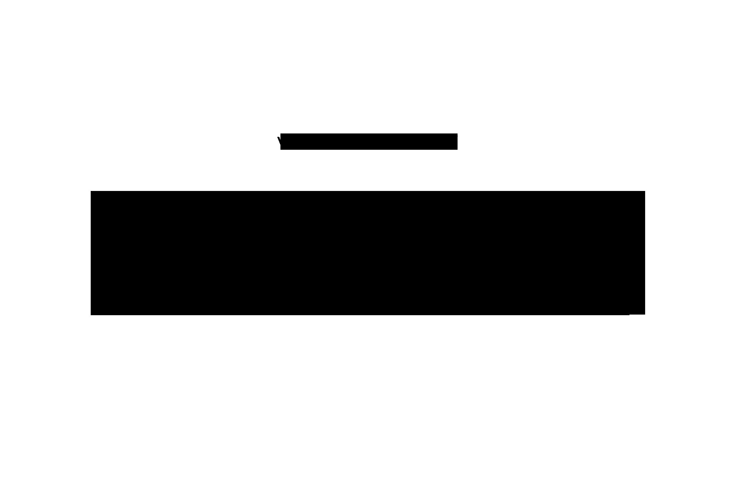 Zitat-4a
