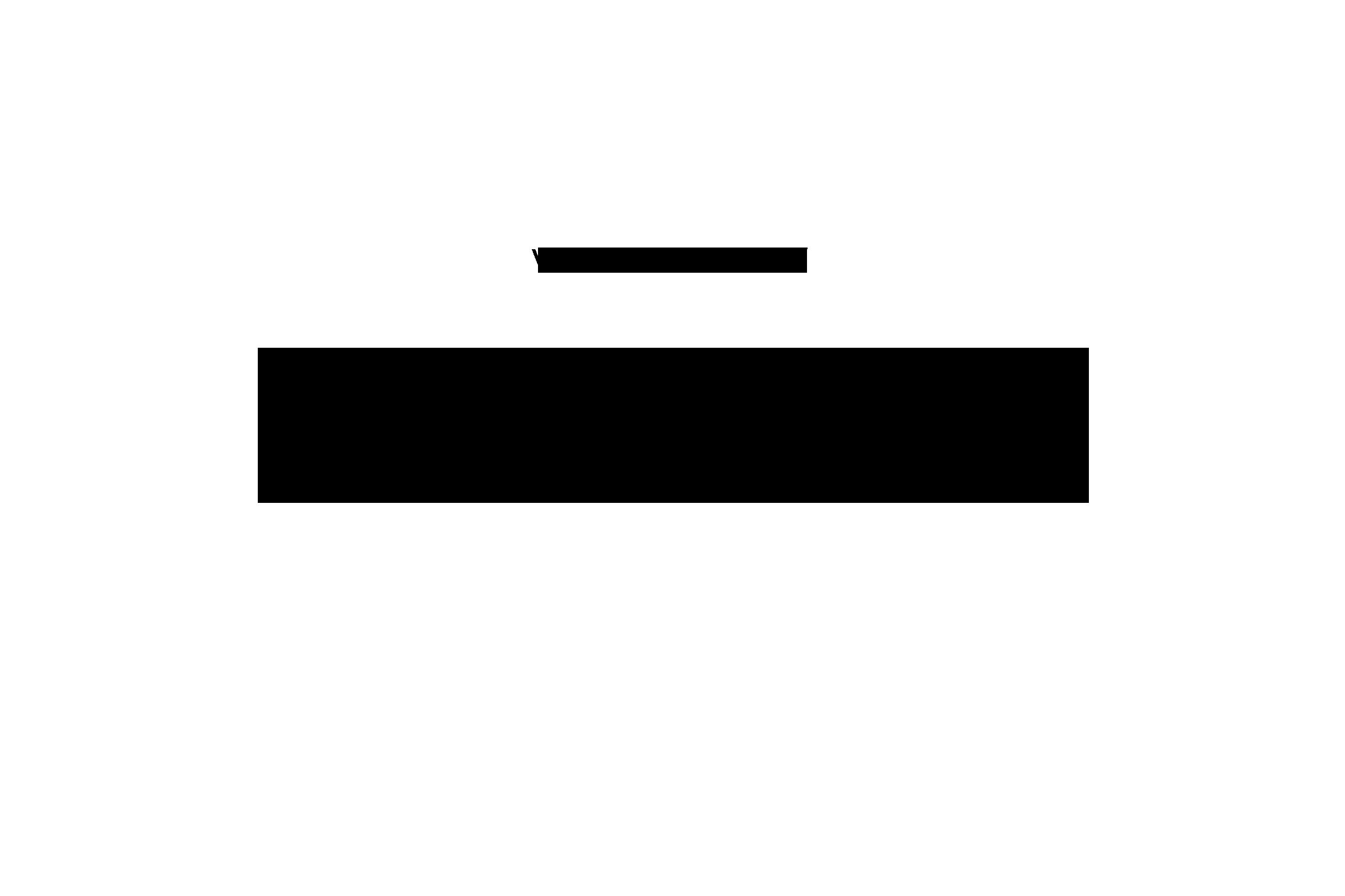 Zitat-5a
