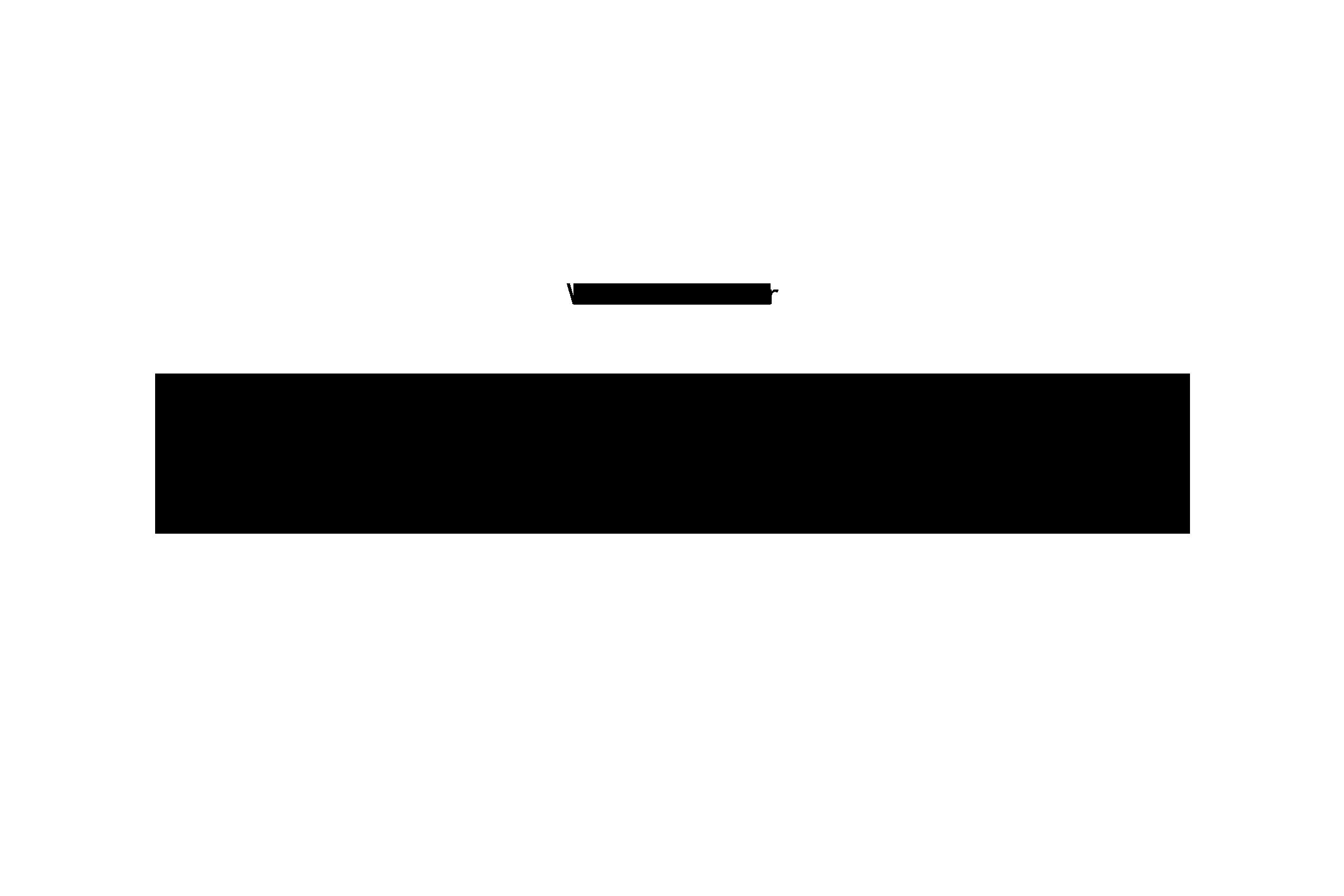 Zitat-1